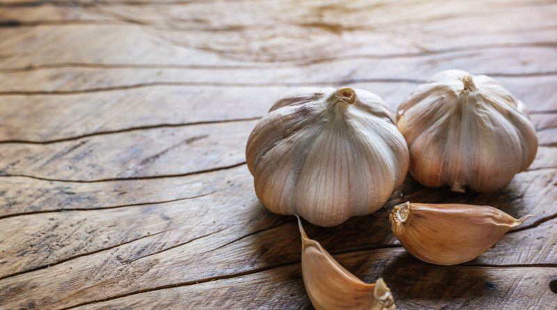 Garlic: source of allicin